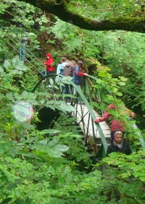 Walks at Devils Bridge Falls